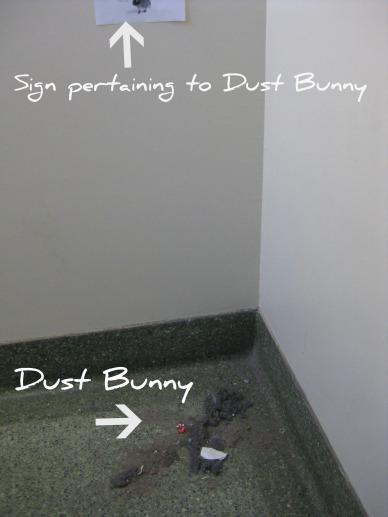 RIP dust bunny
