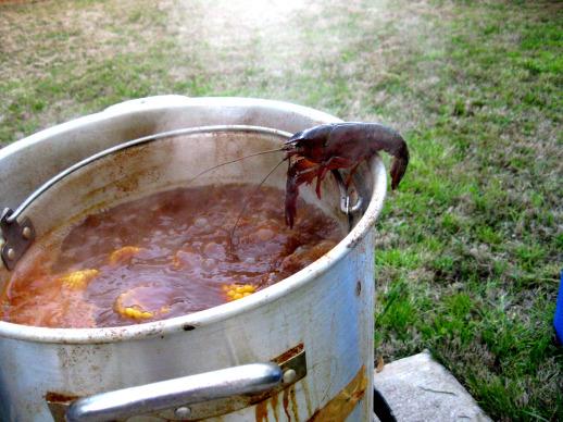 crawfish jumper