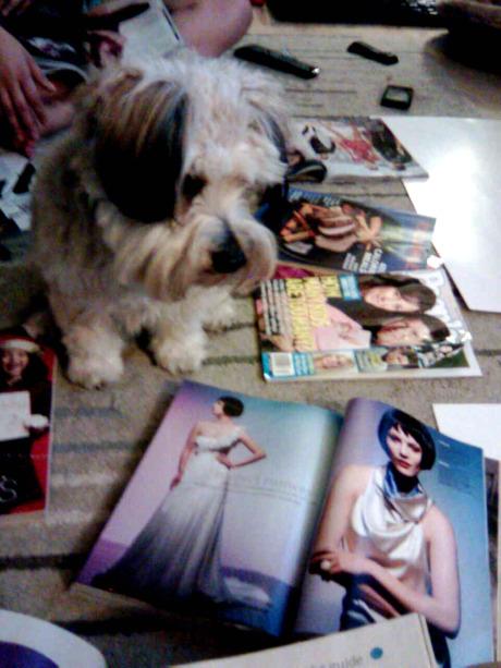 Ratchet Magazines