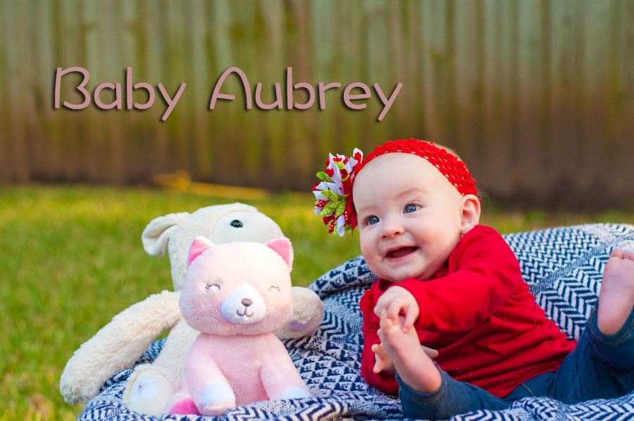 Austin Baby Photography