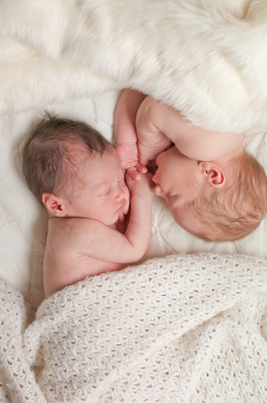 Portrait Session: New Born Babies