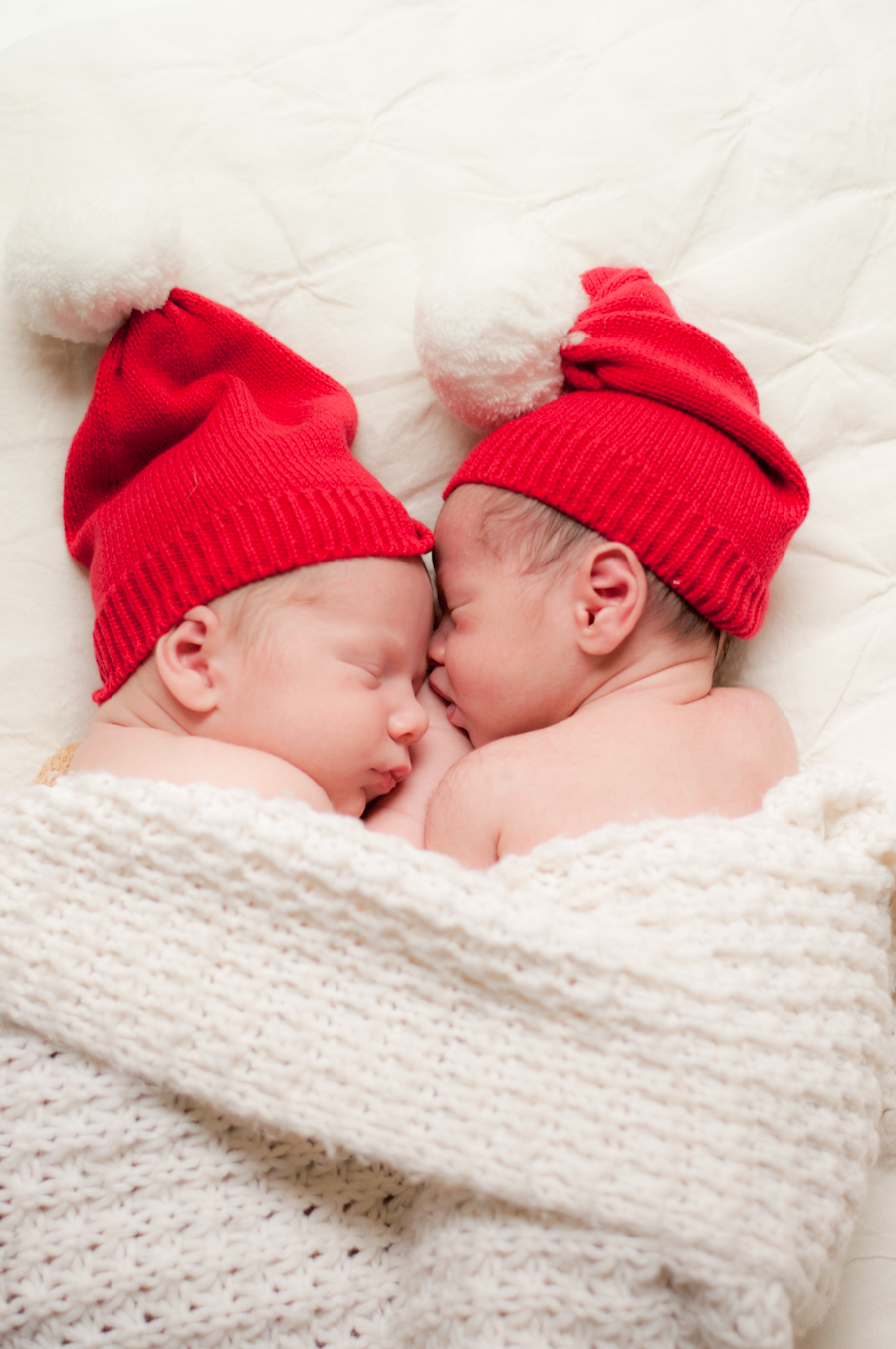 Portrait Session: New Born Babies